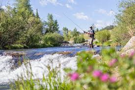 Activities Fly Fishing, 1 man flyfishing in the stream with trees and flowers