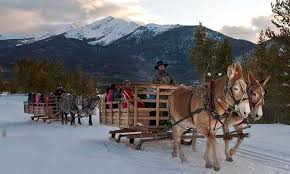 Alpine Villa Activities Sleigh Ride at 2 Below Zero, 2 horse-drawn sleighs filled with adults and children
